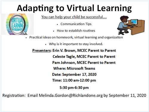 Adapting to Virtual Learning