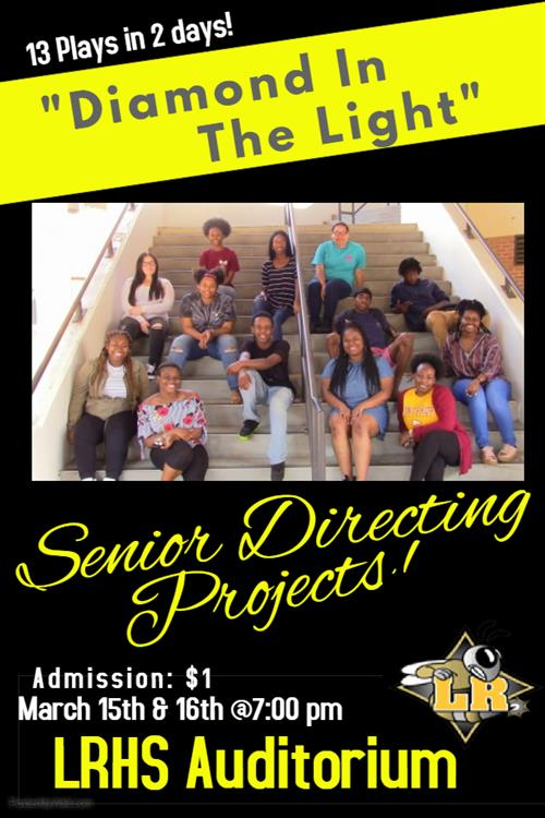 Senior Directing Projects