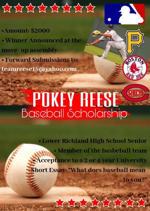 Baseball scholarship flyer